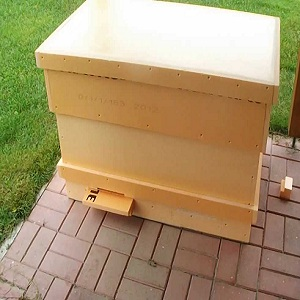hive lounger by youtube